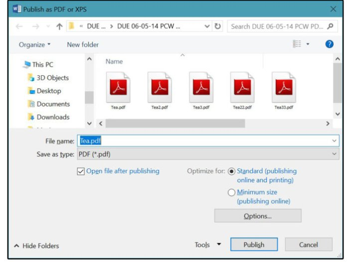 07b2 publish the exported pdf file