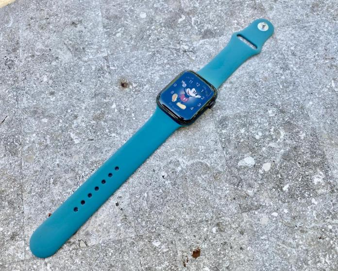 Apple Watch Sport Band in Cactus