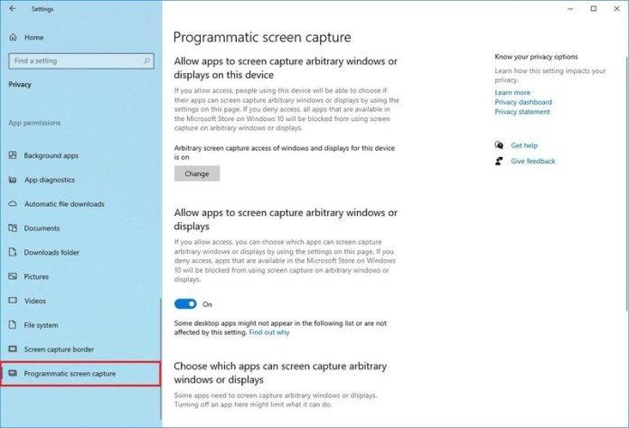 Programmatic Screen Capture