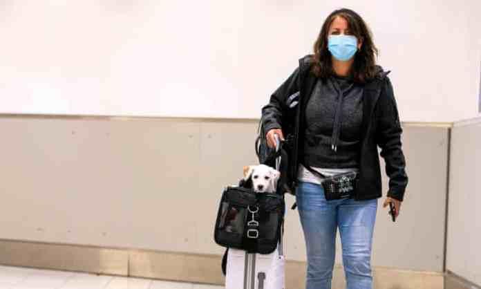 A woman carries her dog as she walks through an airport