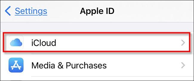 "Tap ""iCloud."""