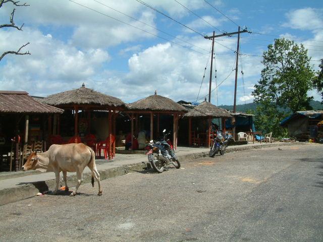 28 juli 2005 Shivpatinagar – Chitwan National Park
