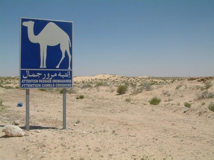 29 april  2009 Bedoeïenentent – Douz