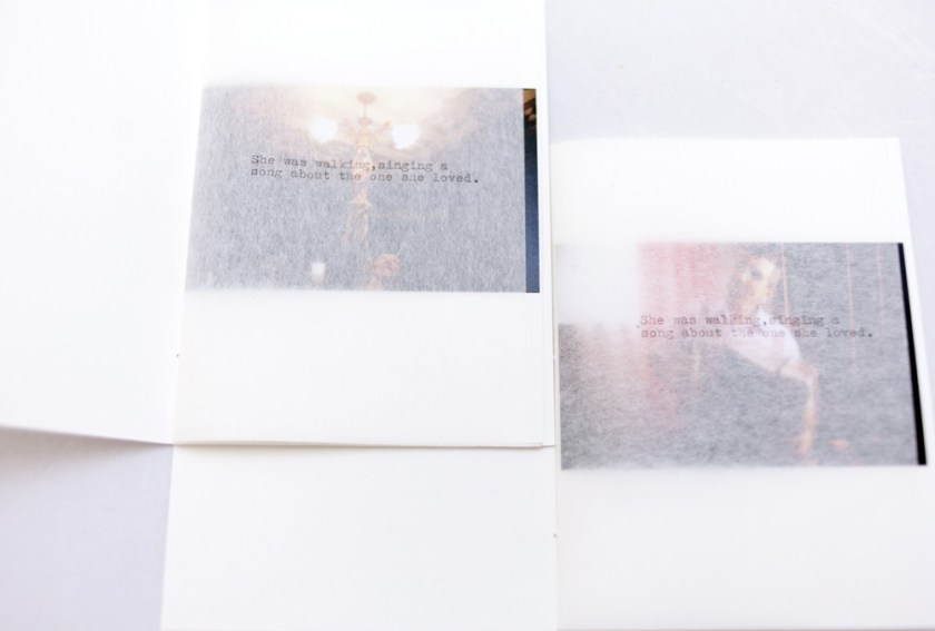 © Andrea Boscardin and Arianna Senesi, box set including 2 books + 1 framed picture collected in a handmade lace soft case, totally handmade, Rumore Nero