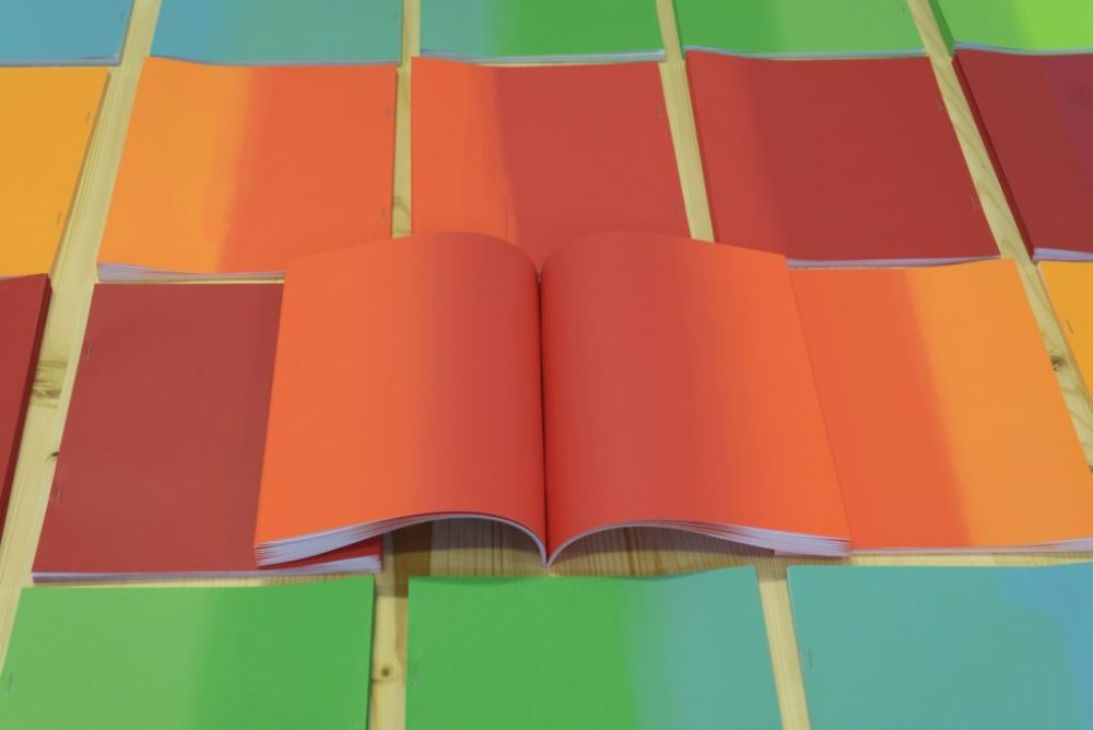 © Thomas Perrodin, 19 x 24 cm, 42 pages, serigraphic printing, side stitch bookbinding, Hécatombe Edtitions, 2014