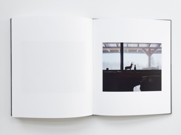 © Josee Schryer, 20,5 x 24,5 cm, 72 pages, hardcover clothbound with silksreen print, selfpublished, edition of 50 copies, 2015