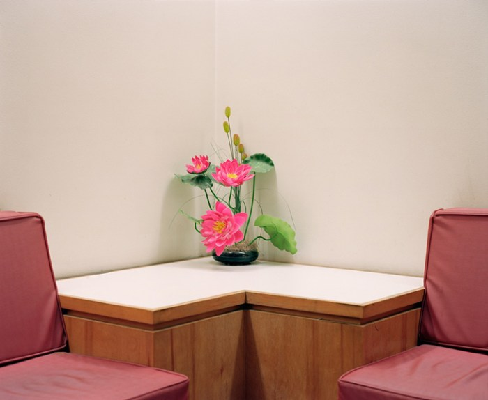 """© Dana Stirling, """"Plastic Pink"""" from the series """"Cache"""""""