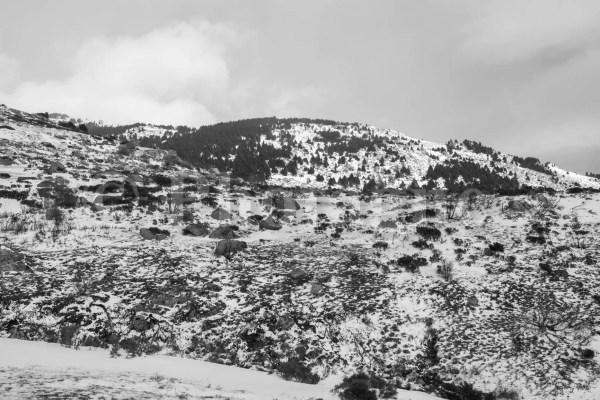 En montant à la cabane du Serrat del Freser, en raquettes dans les Pyrénées catalanes