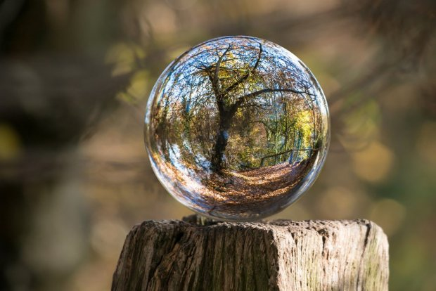 glass ball photo autumn