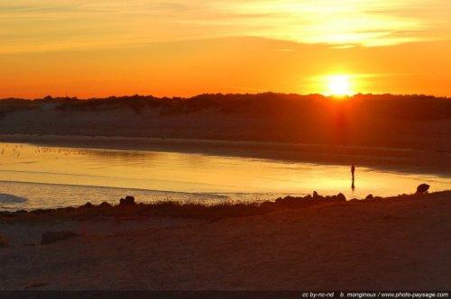 Promeneur, lever de soleil, bord de plage