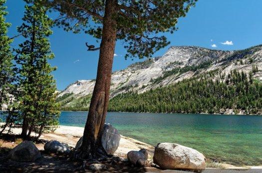 7 - Yosemite, en Californie. Les paysages de ce parc national sont très variés et absolument magnifiques, avec la rivière Merced qui coule au milieu d'une vallée profonde et boisée, ses cascades et falaises vertigineuses, sa forêt de séquoias géants (Mariposa Grove), ses prairies humides, sa faune sauvage et abondante (cerfs, écureuils, ou même ours...) ou encore ses lacs d'altitude, comme ici le lac de Tenaya, un petit bijou offert par dame nature.