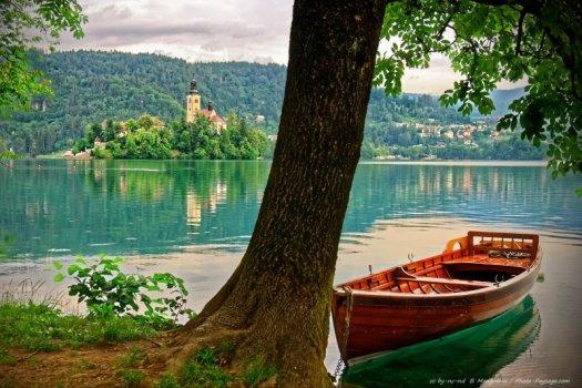 De nombreux bateliers louent leur service pour vous conduire sur l'île de Bled. A moins que vous ne décidiez de louer votre propre barque pour vous promener sur le lac à votre rythme.