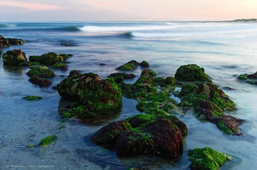 Rochers à marée basse face à l'océan atlantique (Finistère, Bretagne)