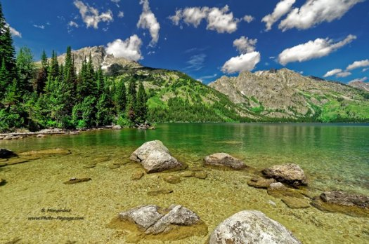 Sur la rive du Jenny Lake, dans le parc national de Grand Teton (Wyoming, USA)
