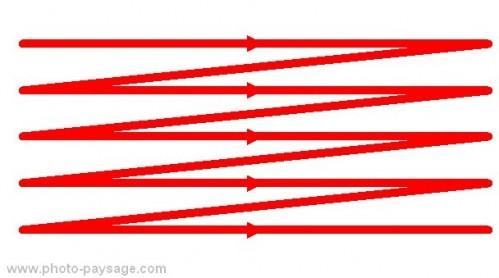 Composition et règle des tiers : le regard suit toujours le même sens de balayage d'une image