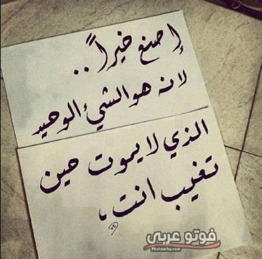 اجمل حالات واتس اب حلوه 2019 اجمل حالات الواتس اب فوتو عربي