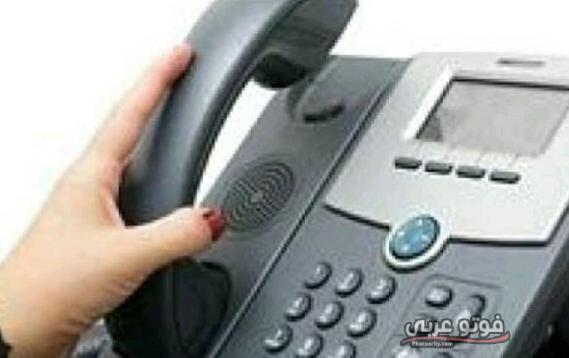 كيفية الاستعلام عن فاتورة التليفون الارضي ٢٠١٩ المصرية