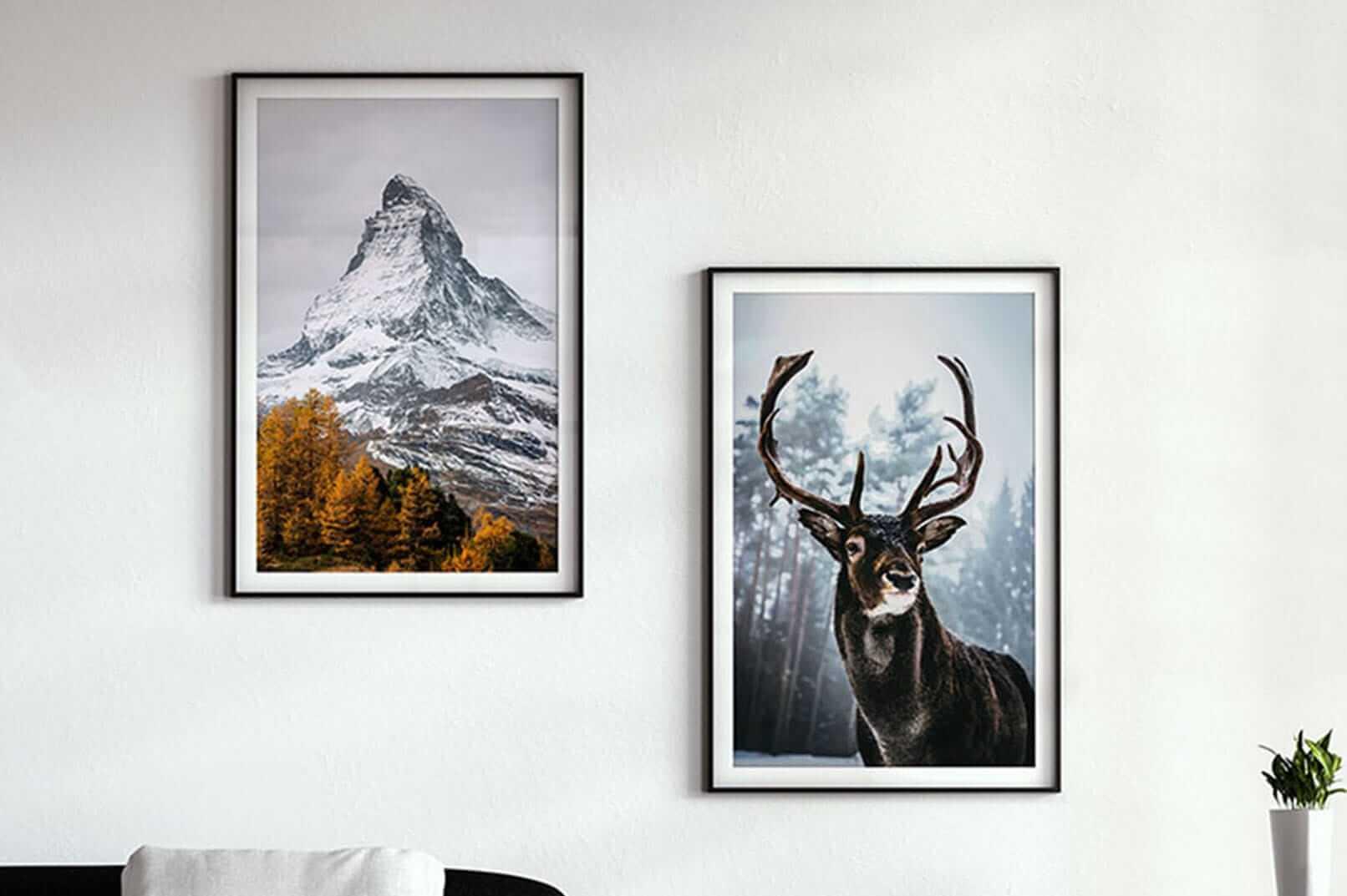 print your photo in premium quality