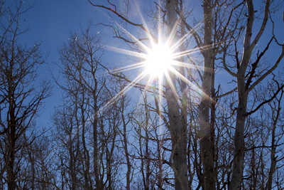 Sunstar Detail