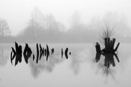Photo Daniel Guffanti