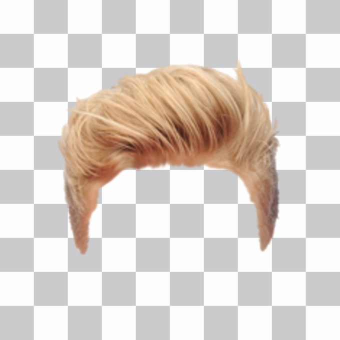 photomontages to put wigs man online
