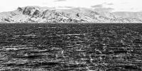 Nuvsvag (1 zu 2) - PHOTOGALERIE WIESBADEN - nördlich-nord