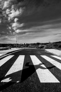 zebrastreifen - ernst-galonske-straße - schattenspiel (sw) - PHOTOGALERIE WIESBADEN - wiesbaden - impressionen 3