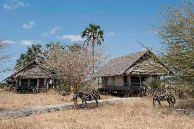 ultimate african safari guidelines