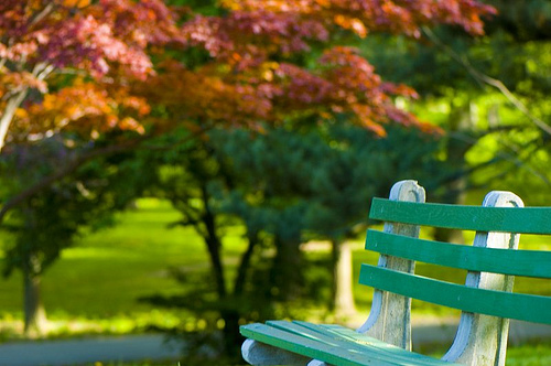 Park Bench by EJP Photo