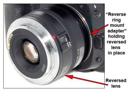 Reverse Ring Mount Adapter Assembly