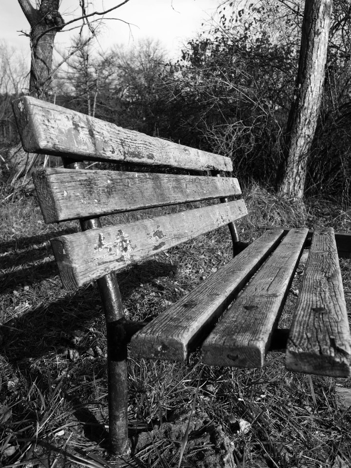 Park Bench by Kalee Greene