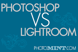 photoshop vs. lightroom