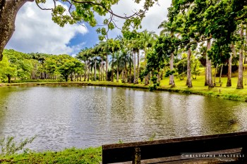 Martinique_011-christophe-Mastelli-photographe-marseille.jpg