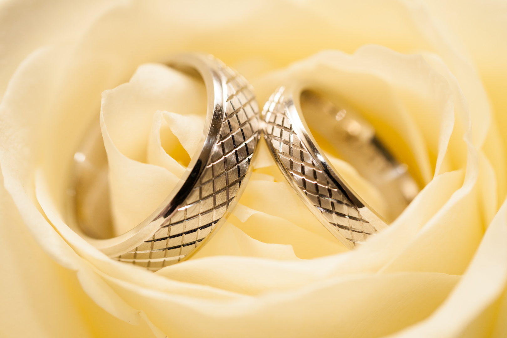 Photoneta-Wedding-rings-2