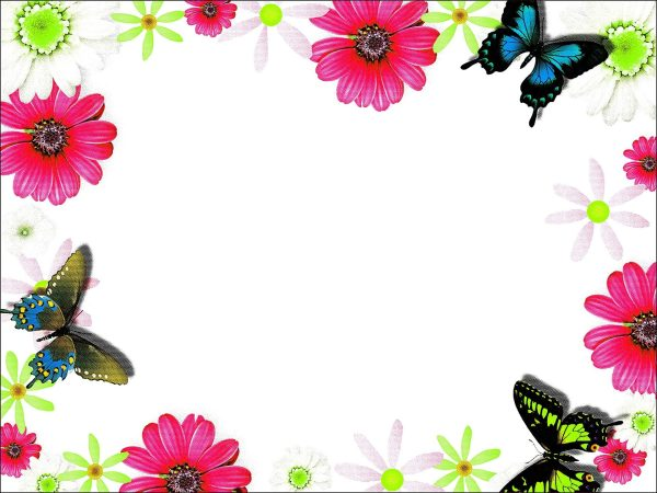 Colorful frame border