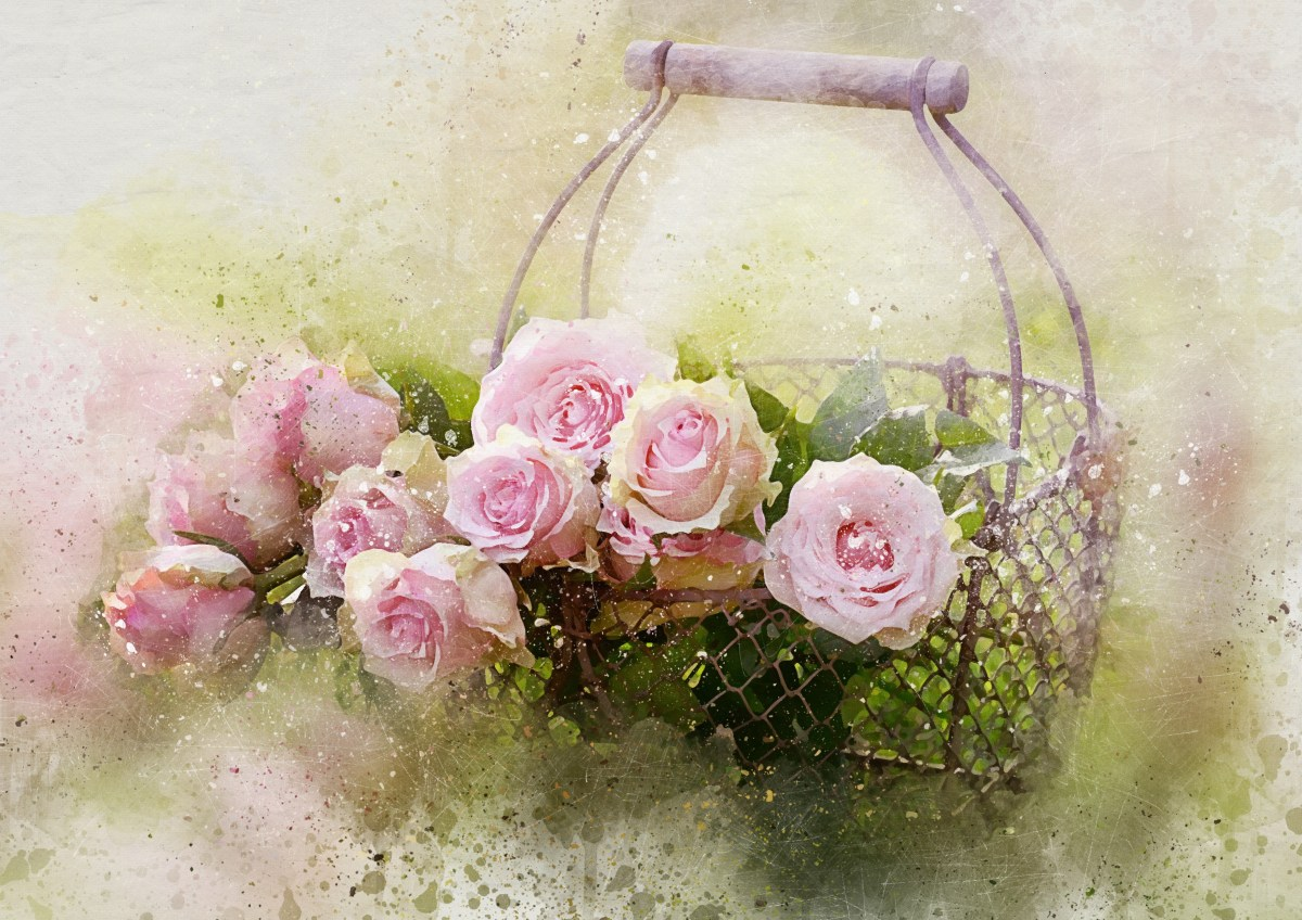 Pink roses and basket watercolor feel