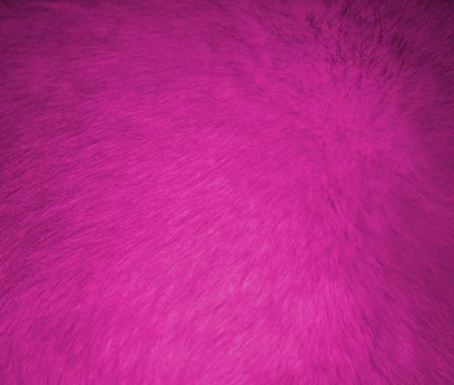 Click Here To Download Full Resolution Image Hot Pink