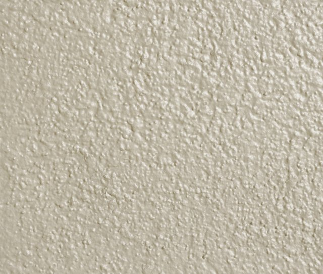 Ivory Off White Painted Wall Texture