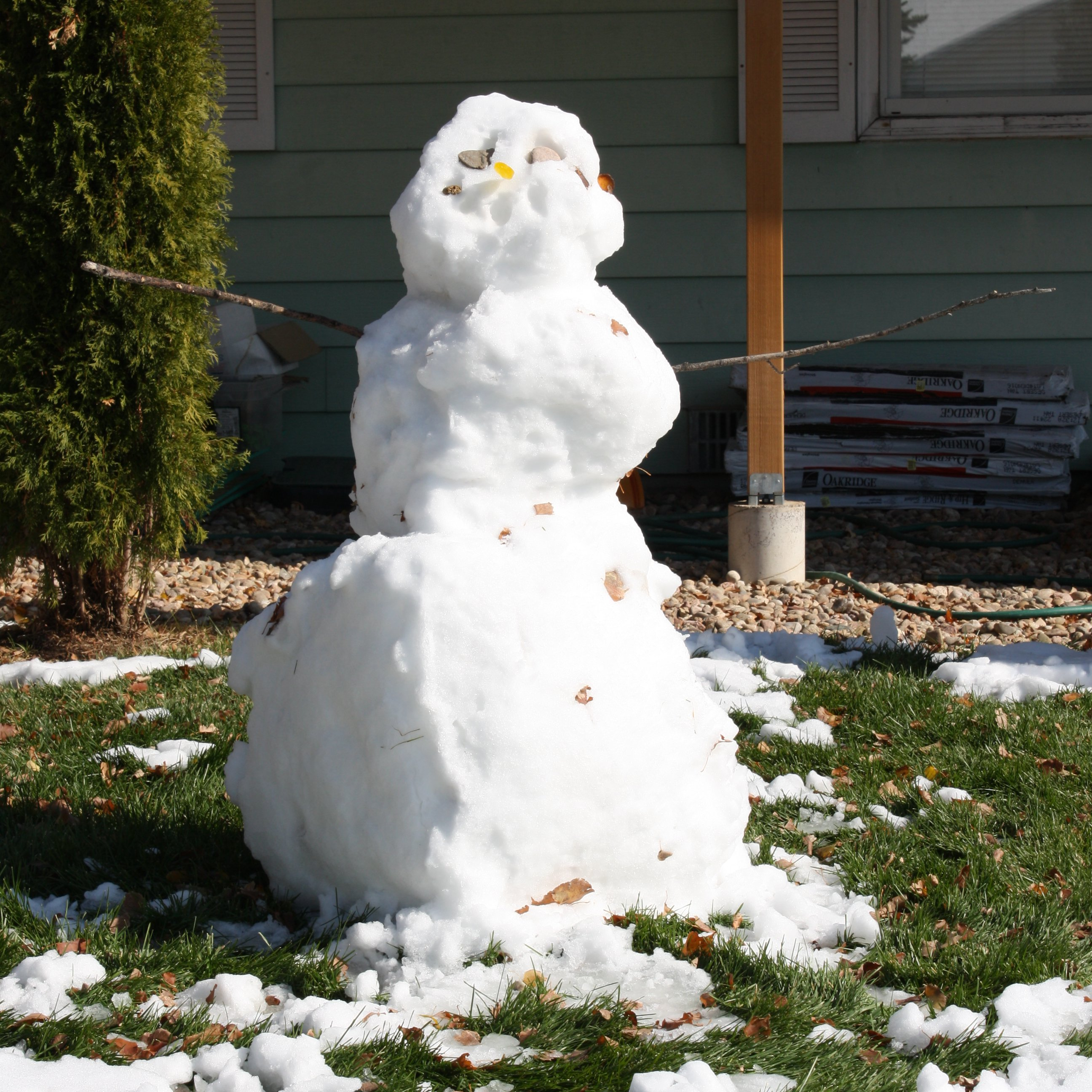 Image result for melting snowman images