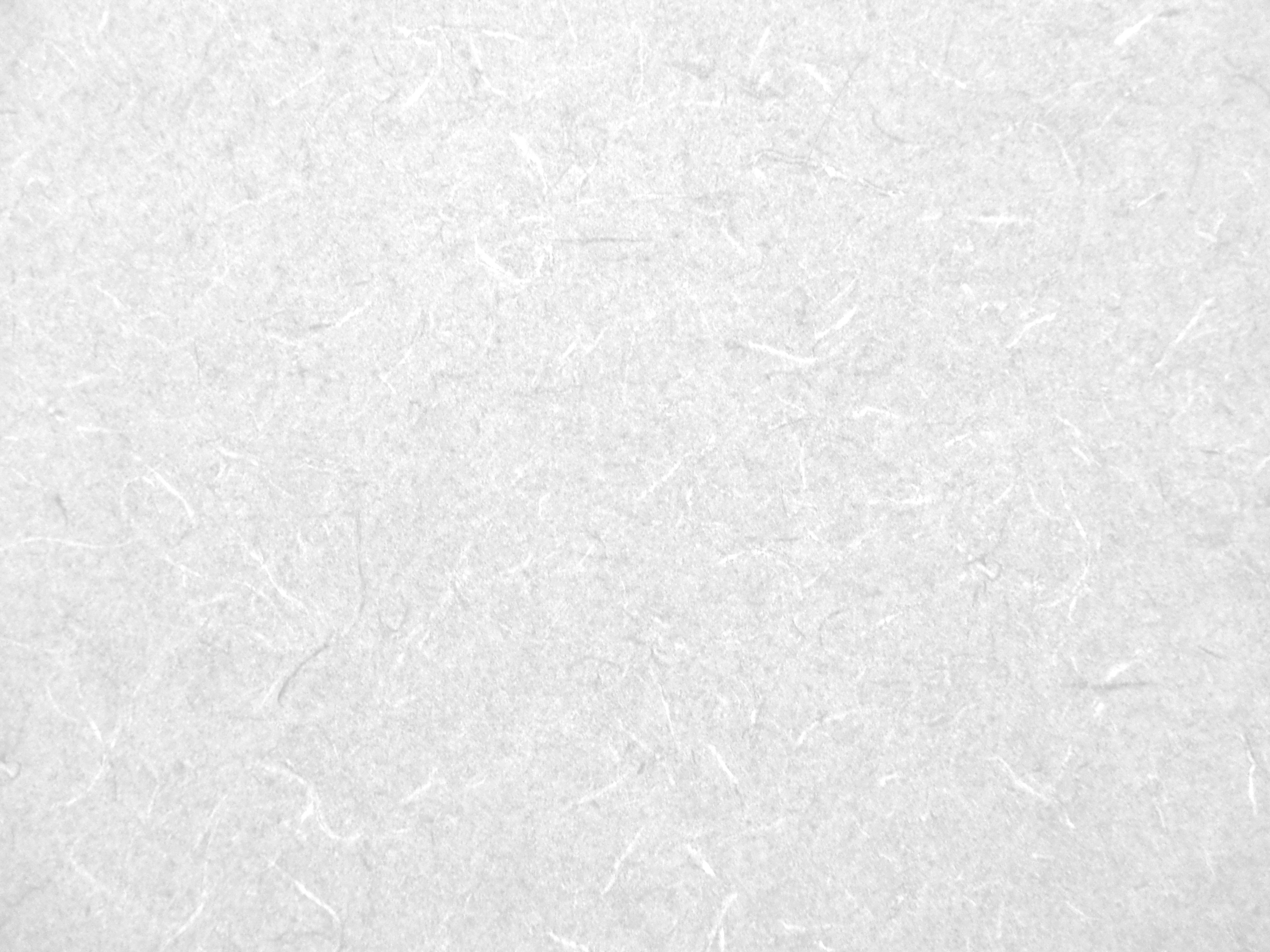 White Wallpaper Pattern