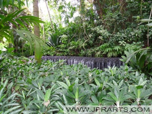 Botanische Gärten von Singapur