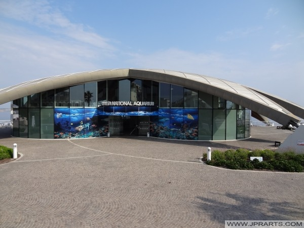 Malte aquarium national, baie de St Paul