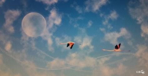 Art numérique, flamants roses dans le ciel avec lune
