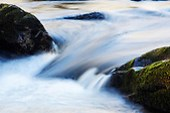 Cold water pours between two mossy boulders, Little Stony Creek, Pembroke, Giles County, Virginia, USA