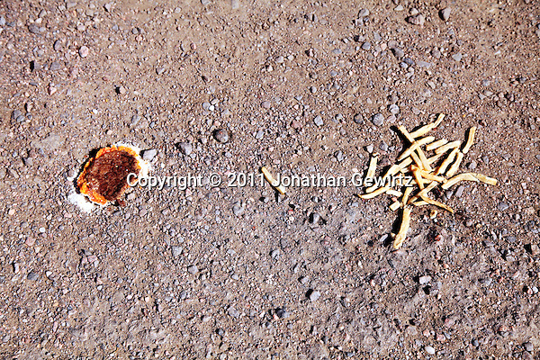A squashed cheese burger and some French fries on the ground. (Jonathan Gewirtz)