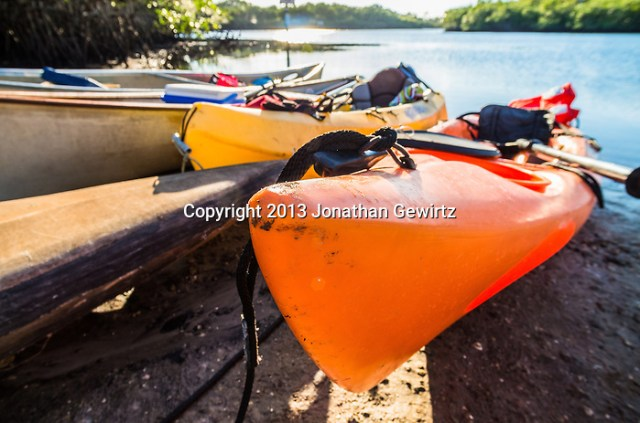 Closeup view of kayaks and canoes beached on a sunny river bank. (Jonathan.Gewirtz@gmail.com)