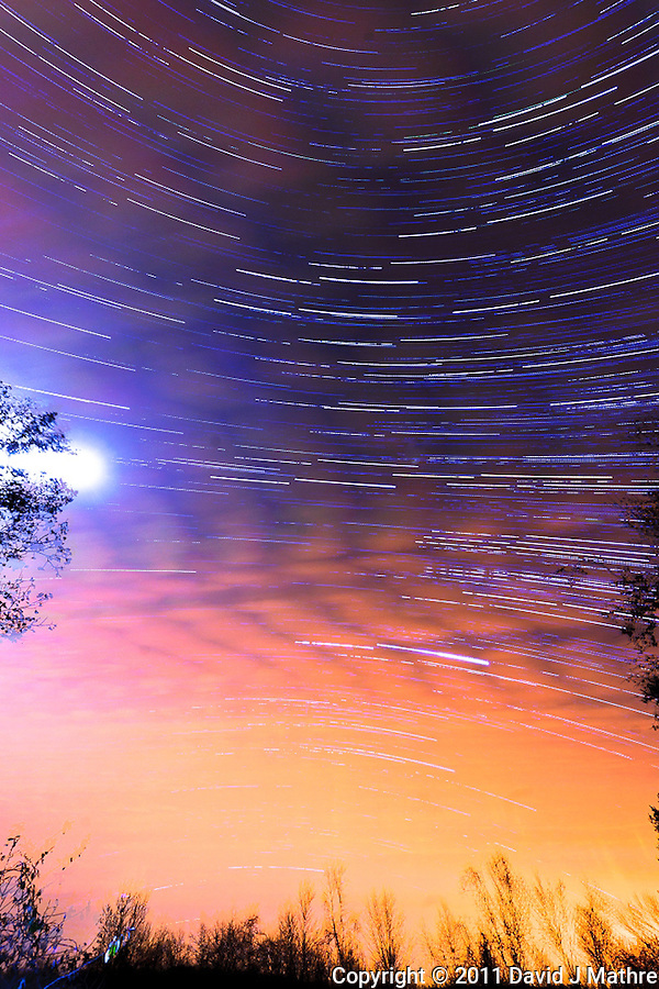 South View Star Trails. Late Autumn Night in New Jersey. Image taken with a Nikon D3 and 14-24 f/2.8 lens (ISO 200, 15 mm, f/5.6, 60 sec). Composite of images 401-500 combined using the Startrails program. (David J Mathre)