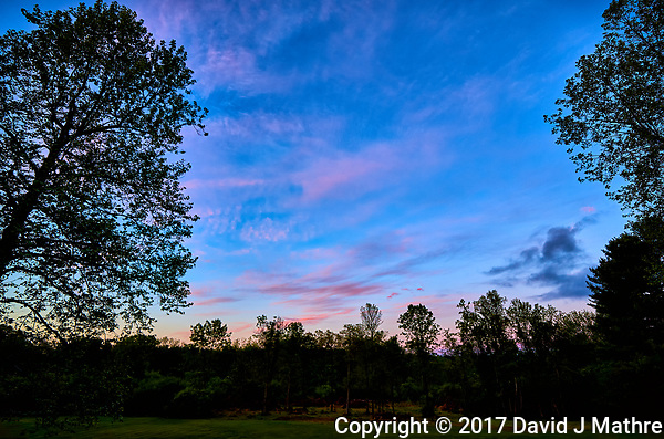 Pink clouds at dawn from my back door. Spring in New Jersey. Image taken with a Leica T camera and 11-23 mm lens (ISO 100, 11 mm, f/3.5, 1/50 sec). (David J Mathre)