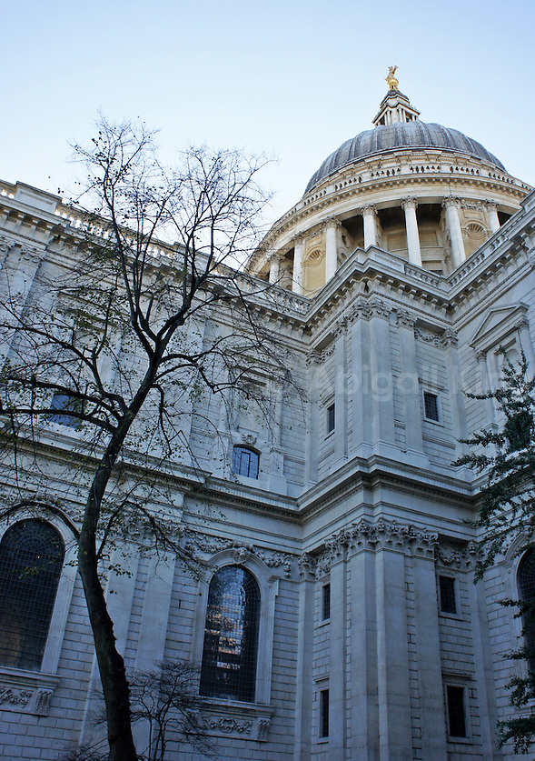 Photo of St Paul's Cathedral, City of London, with a winter's tree, forever London