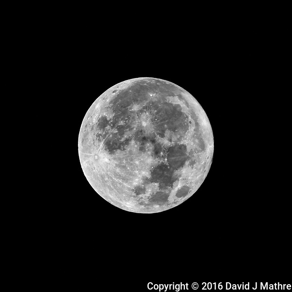 Full Moon. Autumn Nature in New Jersey. Image taken with a Nikon 1 V3 camera and 70-300 mm VR lens (ISO 200, 300 mm, f/16, 1/200 sec). (David J Mathre)